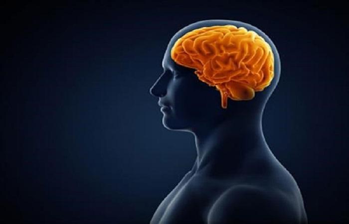 Củ dền giúp tăng cường chức năng não bộ