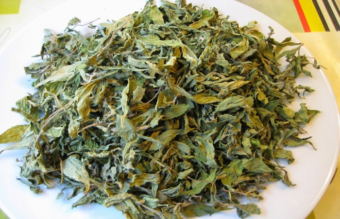 Sử dụng lá trà xanh khô